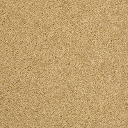 Royal Court Plush Carpet