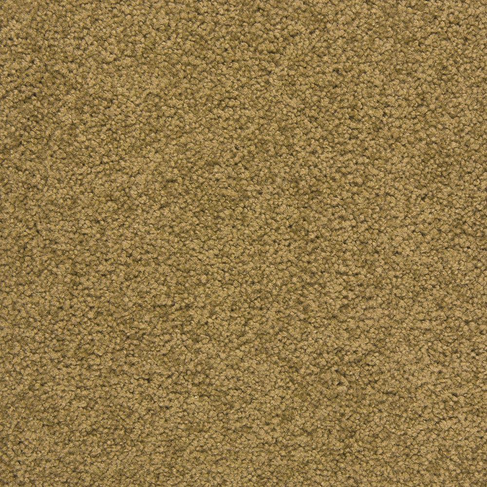 Royal Court Plush Carpet Harvest Color