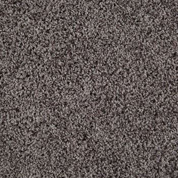 Shimmer Frieze Carpet Atomic Night Color