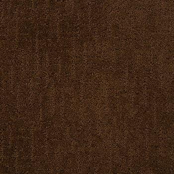 Shindig Pattern Carpet Cub Color