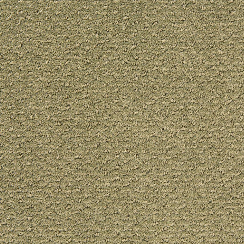 Sweet N Simple Fog Green Carpet