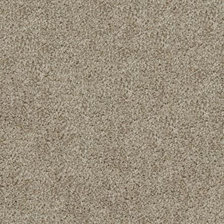 Play Nice Plush Carpet