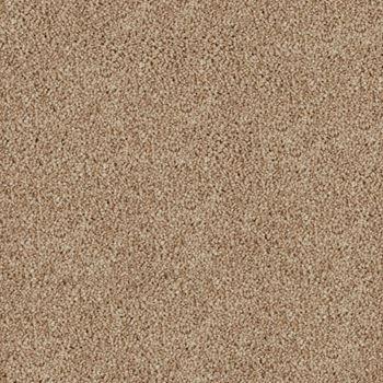 Play Nice Plush Carpet Vintage Tan Color