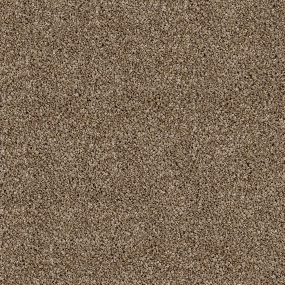 Play Nice Plush Carpet Wild Truffle Color