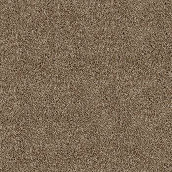 Play Nice Plush Carpet Wild Truffle Color