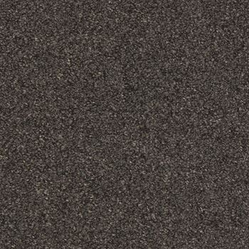 Tenbrooke II Commercial Carpet Black Sable Color