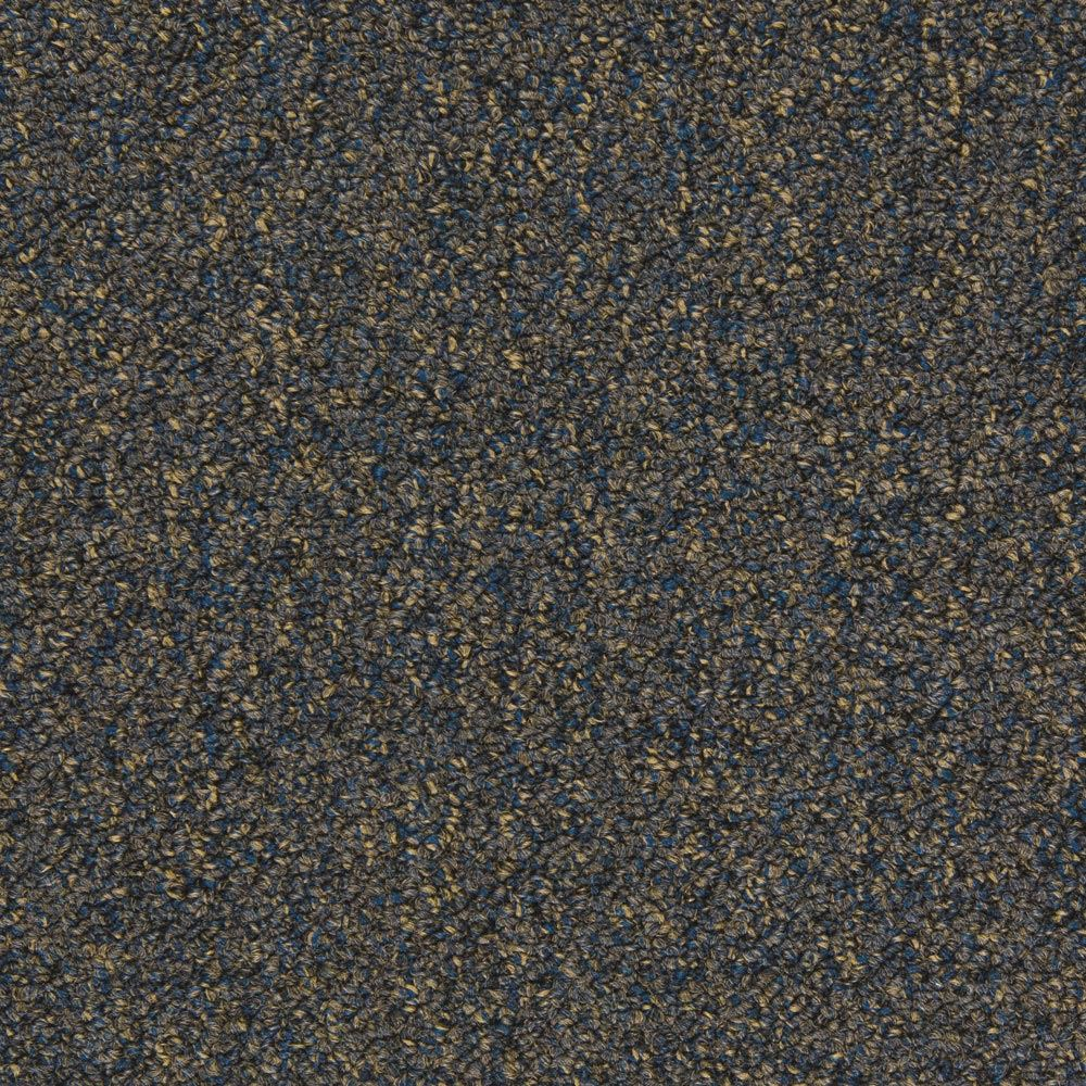 Tenbrooke II Commercial Carpet Midnight Dream Color