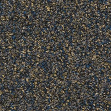 Tenbrooke II Commercial Carpet And Carpet Tile Midnight Dream Color