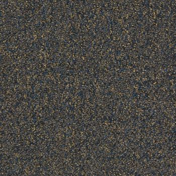 Tenbrooke II Commercial Carpet Midnight Dream Color