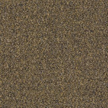 Tenbrooke II Commercial Carpet Sandwashed Driftwood Color