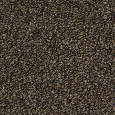 Tenbrooke II Commercial Carpet And Carpet Tile Stealth Jet Color