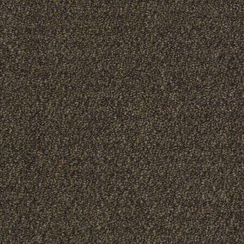 Tenbrooke II Commercial Carpet Stealth Jet Color