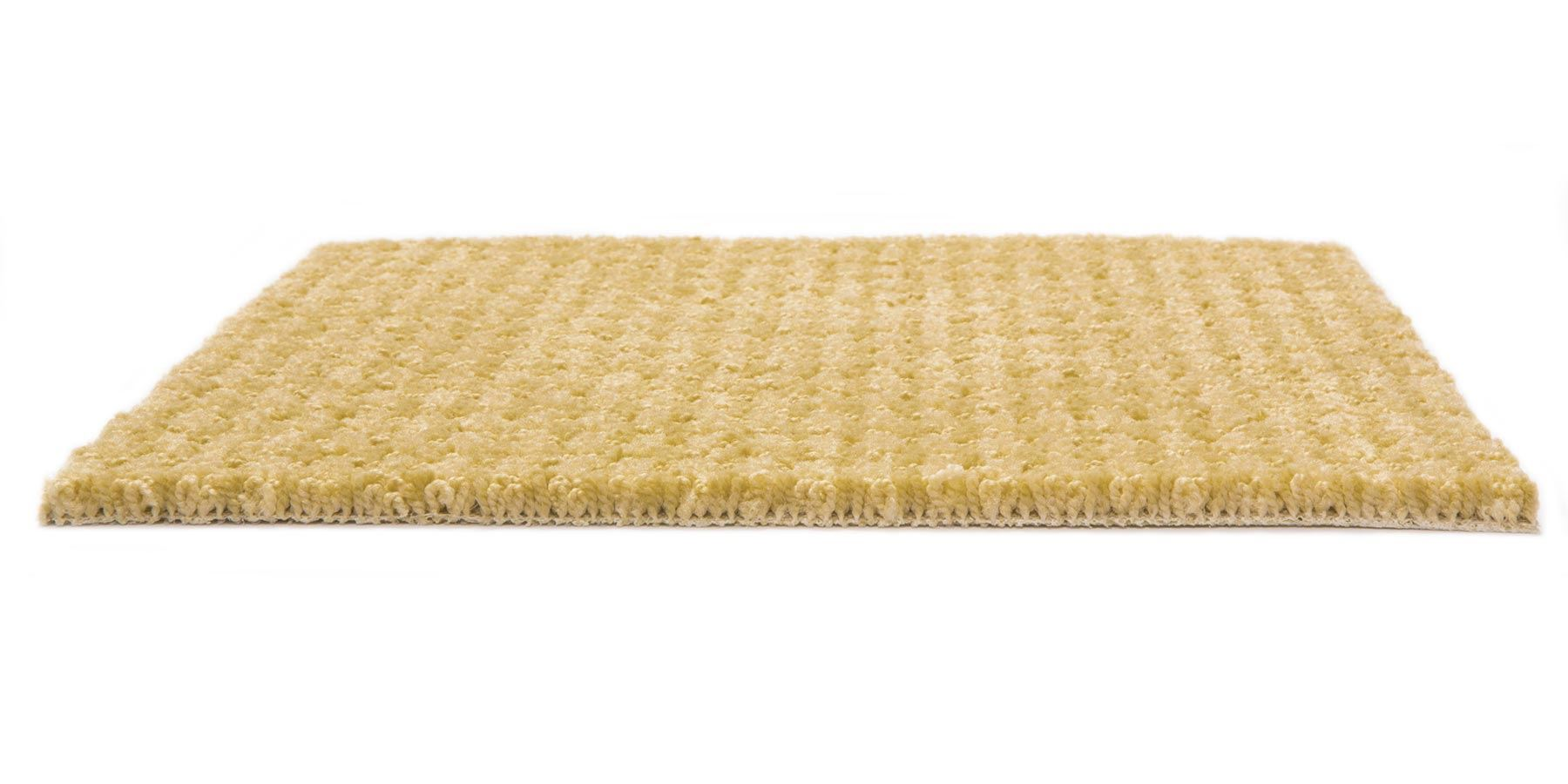 Dont Stop Believin Golden Fleece Carpet