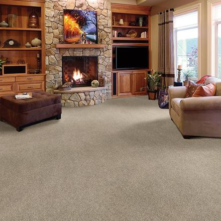 Brentwood Plush Carpet