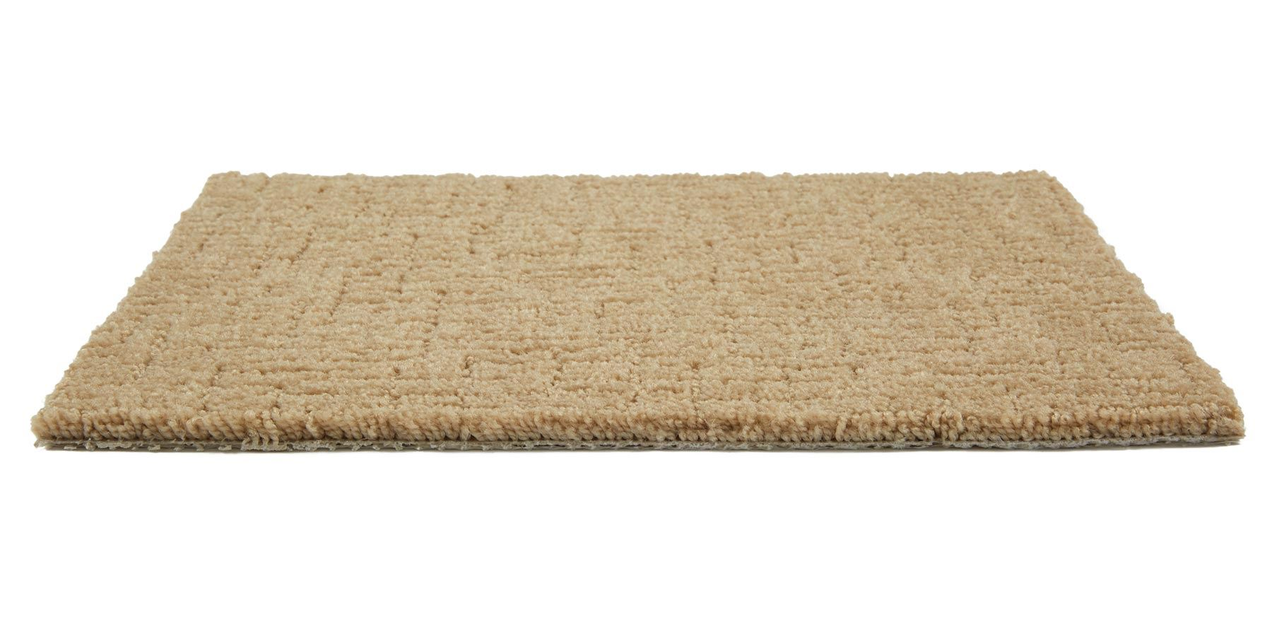 Shindig Toasted Coconut Carpet