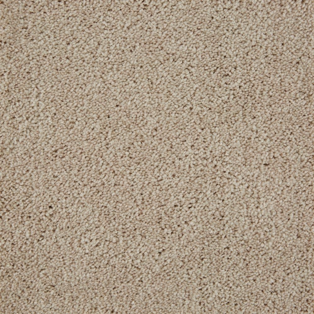 Beldon Plush Carpet Crepe Color