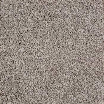 Beldon Plush Carpet Eclair Color