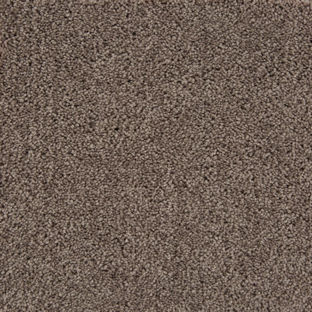 Beldon Plush Carpet Tarte Color
