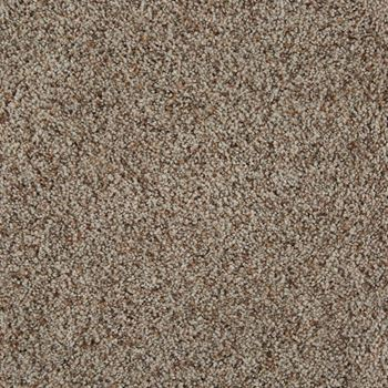 Cloud Nine Plush Carpet Balanced Color