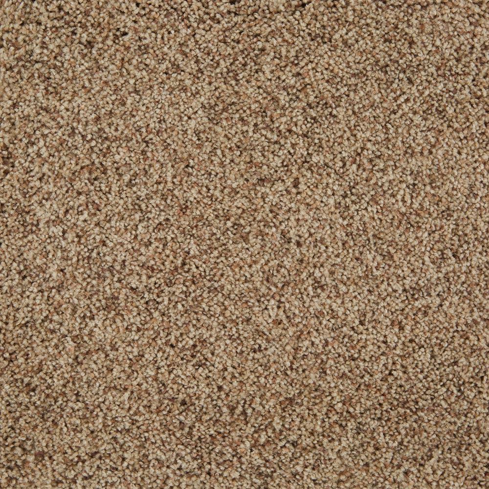 Cloud Nine Plush Carpet Laid Back Color