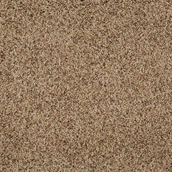 Cloud Nine Plush Carpet Laid Back Color