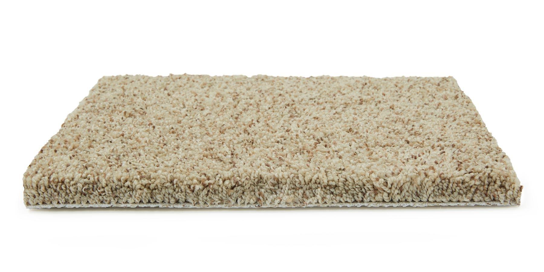 Cloud Nine Laid Back Carpet