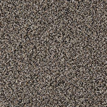 In The Know Plush Carpet Cha Cha Cha Color