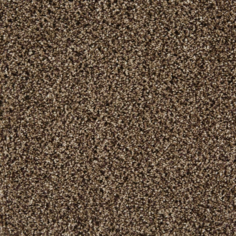 In The Know Plush Carpet Waltz Color