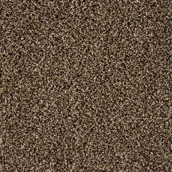 In The Know Plush Carpet Waltz Color
