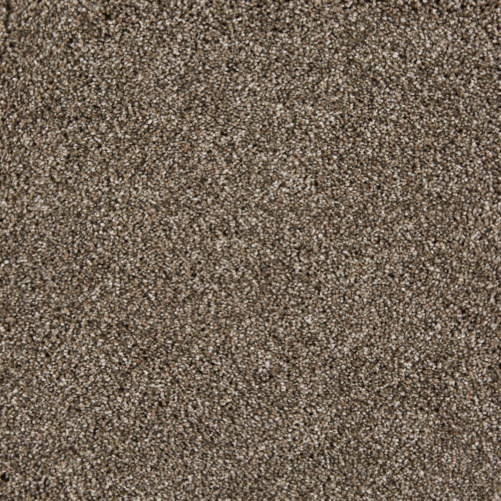 On The Scene Plush Carpet Cheer Color