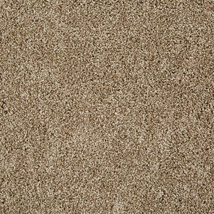 On The Scene Plush Carpet