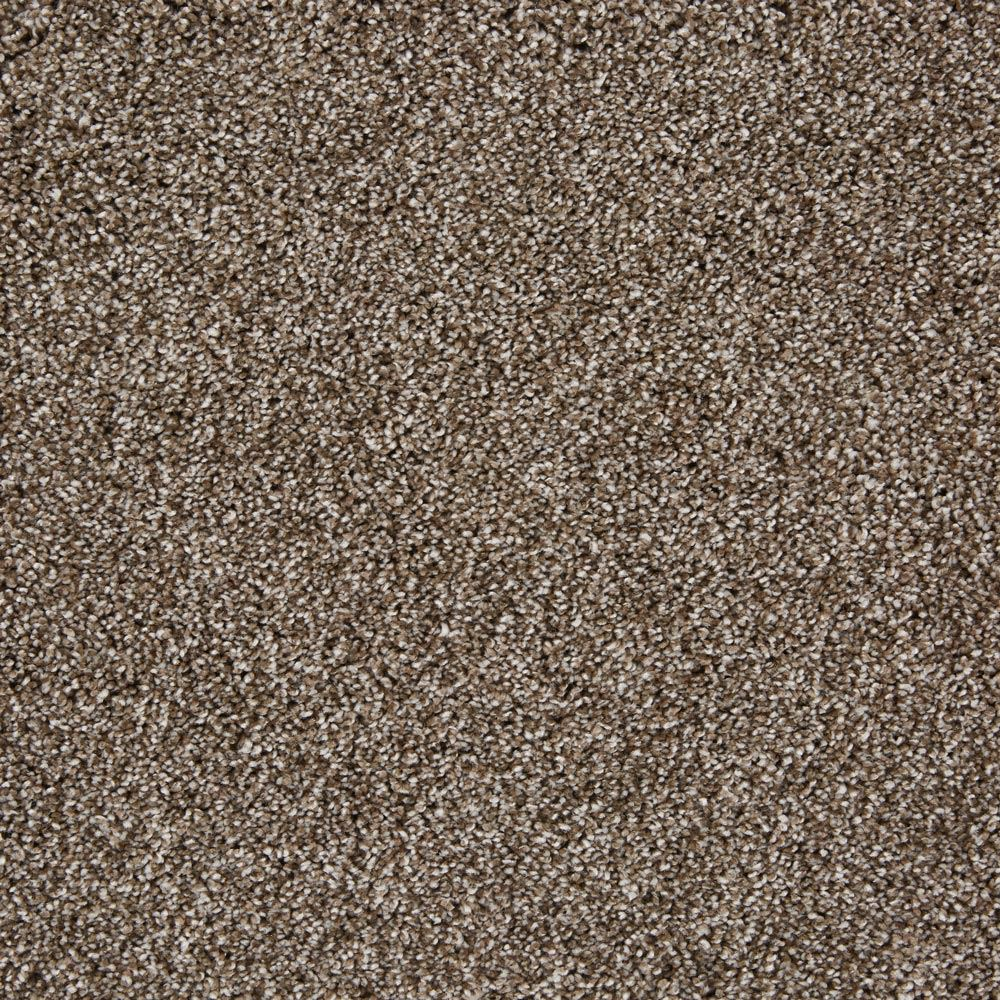 On The Scene Plush Carpet Sweet Talk Color