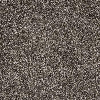 On The Scene Plush Carpet Whisper Color