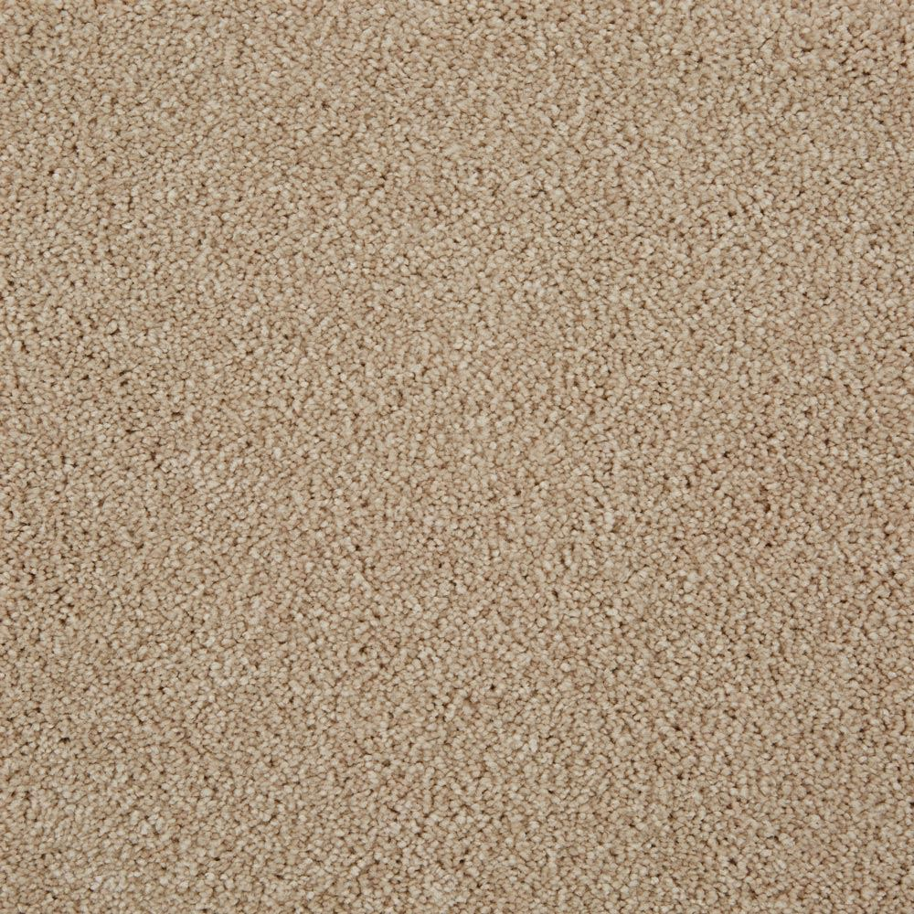 Parlor Plush Carpet Blush Color