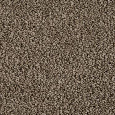 Parlor Plush Carpet Contour Color