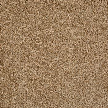 Parlor Plush Carpet Volume Color