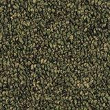 Tenbrooke II Color Sage Leaf
