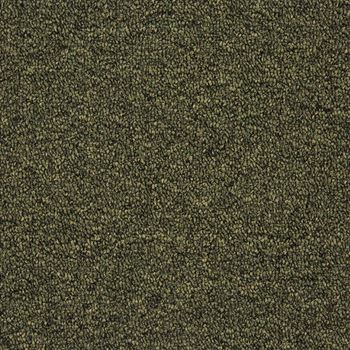 Tenbrooke II Commercial Carpet Sage Leaf Color