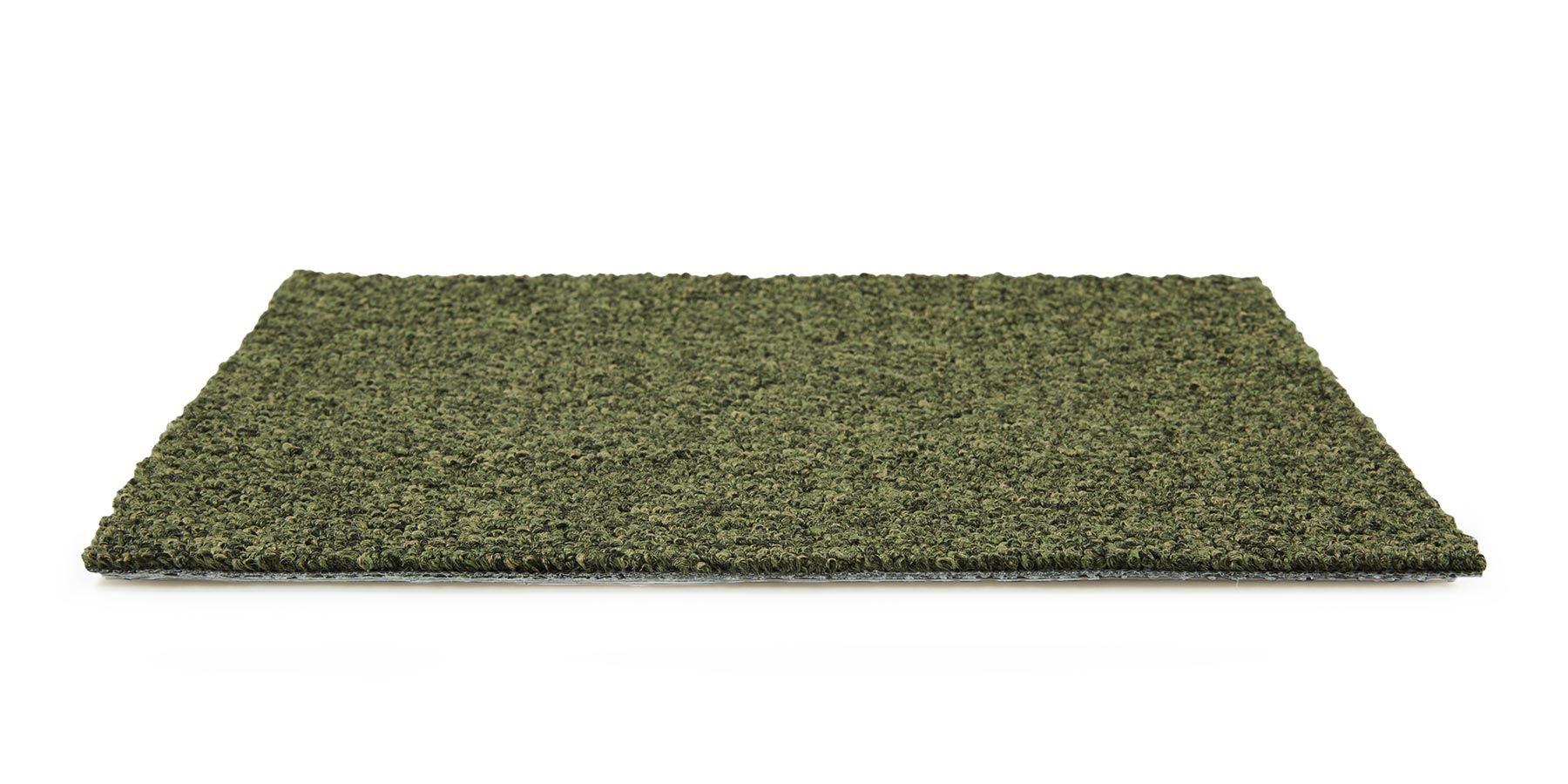 Tenbrooke II Sage Leaf Carpet