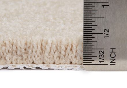 Fair Meadow Plush Carpet