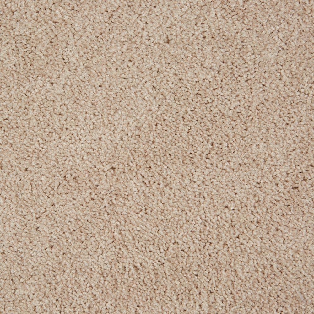 Orion Comet Carpet