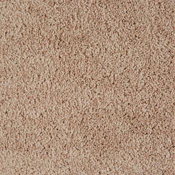 Ridgeland Plush Carpet Hastings Color