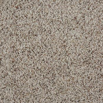 Sidekick Frieze Carpet Oatmeal Color