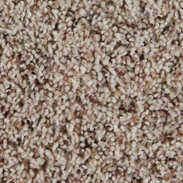 Sidekick Frieze Carpet Sand Dunes Color