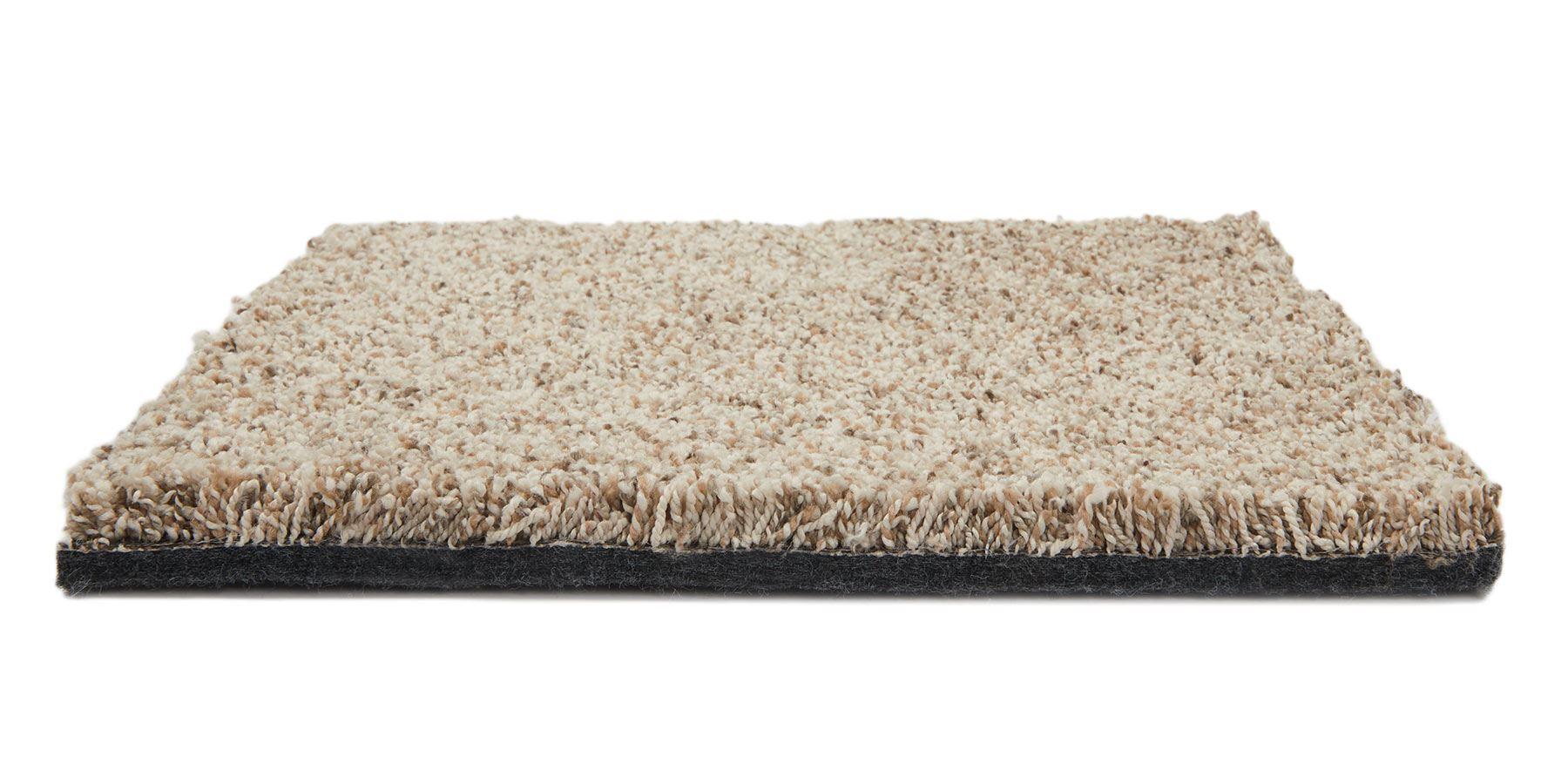 Incomparable Joshua Tree Carpet