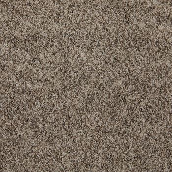 Incomparable Frieze Carpet Great Sandy Color