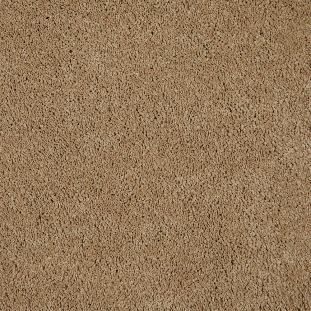 One And Only Plush Carpet Above All Color