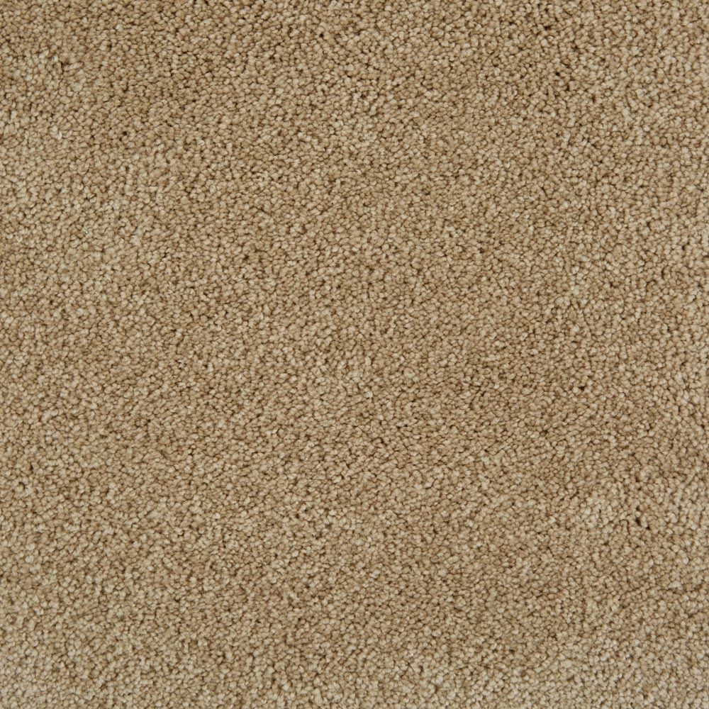 Pleasant Valley Plush Carpet Dusky Dawn Color