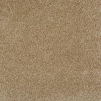 Pleasant Valley Plush Carpet Dusky Dawn Color