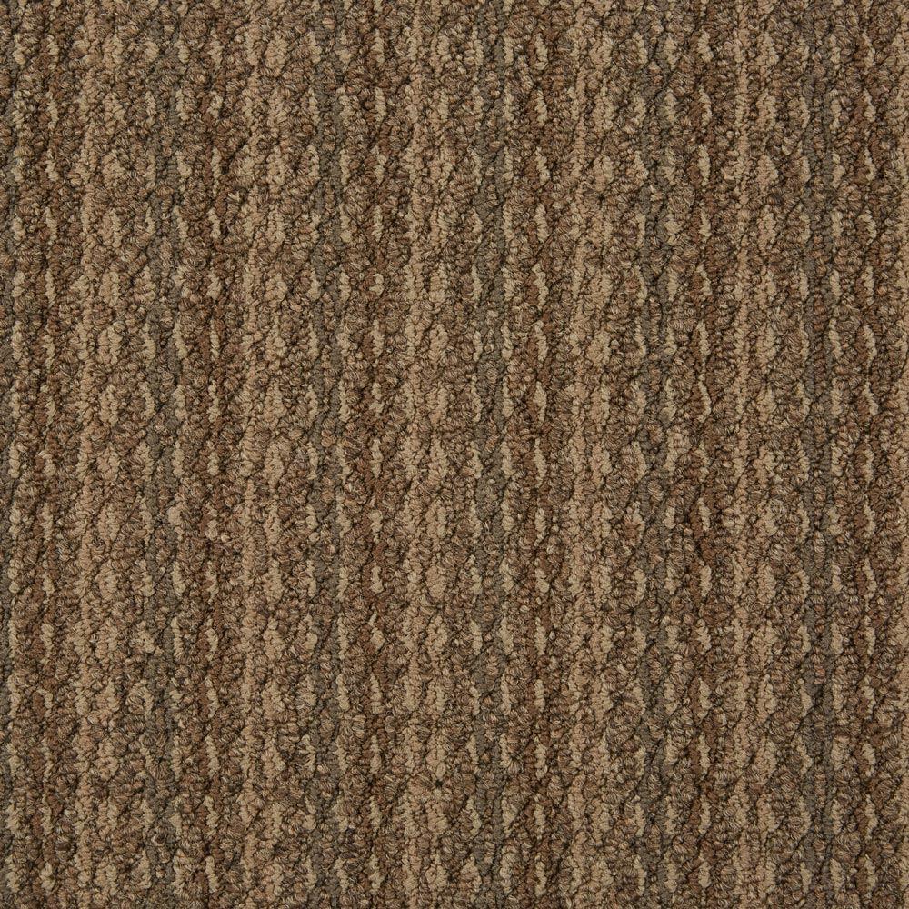 Arise Commercial Carpet Develop Color